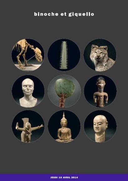Histoire Naturelle -Art Précolombien - Art des Amériques-ART OCÉANIEN ET AFRICAIN ART ASIATIQUE