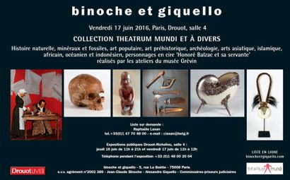 CURIOSITÉS : HISTOIRE NATURELLE - ART AFRICAIN - ART OCÉANIEN - ART ASIATIQUE - ART ISLAMIQUE