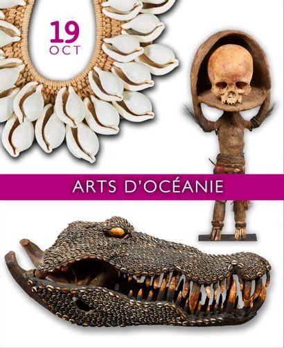ARTS D'OCEANIE : La collection d'un amateur