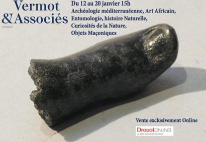 Archéologie, Histoire Naturelle, Entomologie, Art d'Afrique, Curiosités, Objets Maçoniques