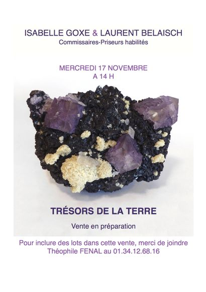 TRÉSORS DE LA TERRE - VENTE EN PRÉPARATION
