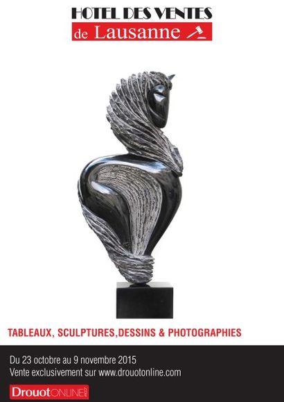 TABLEAUX, SCULPTURES, DESSINS & PHOTOGRAPHIES CONTEMPORAINES