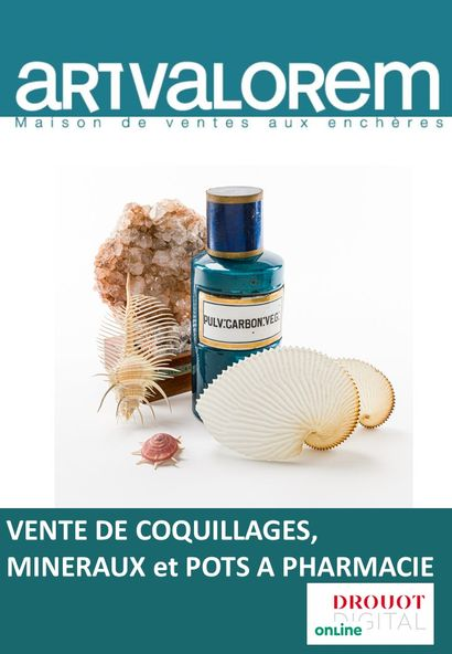 VENTE COQUILLAGES MINERAUX POTS A PHARMACIE