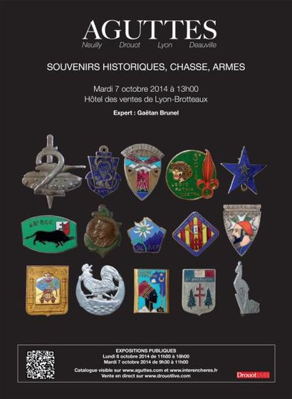 Souvenirs historiques, chasse, armes