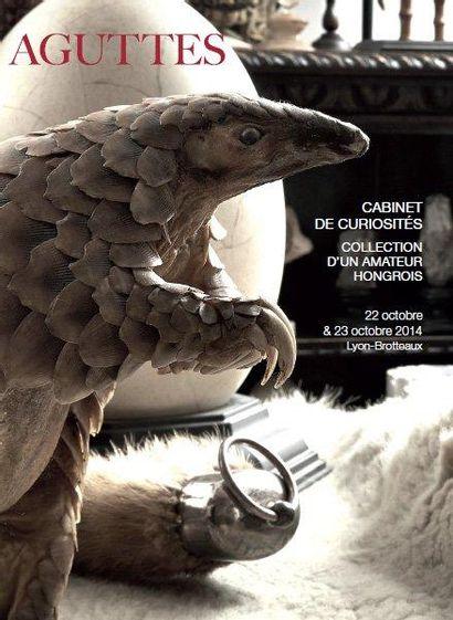 HISTOIRE NATURELLE – CABINET DE CURIOSITE Exceptionnelle collection d'un amateur européen