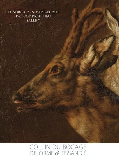 MARINE & PECHE - CHASSE & ART ANIMALIER