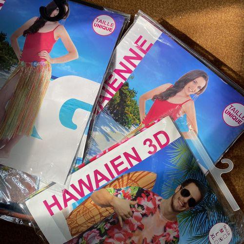 Lot de 4 déguisements hawaien
