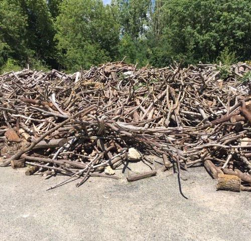 Approximately 50 m3 of wood (figures without guarantee), composed of various spe…