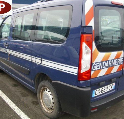 RP] Reserved for professionals: PEUGEOT EXPERT TEPEE 7 seats Diesel, imm. CG 689…