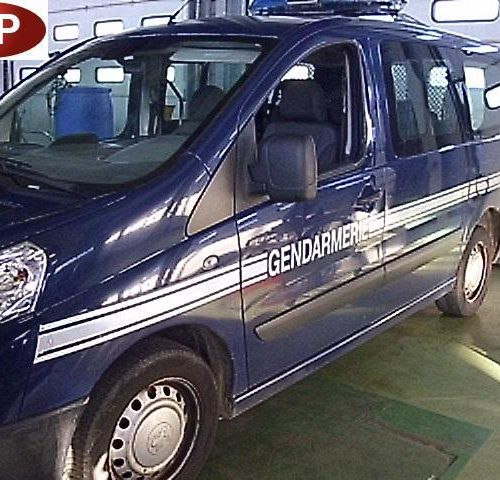 RP] Reserved for professionals: PEUGEOT EXPERT TEPEE Diesel 7 seats, imm. CG 704…